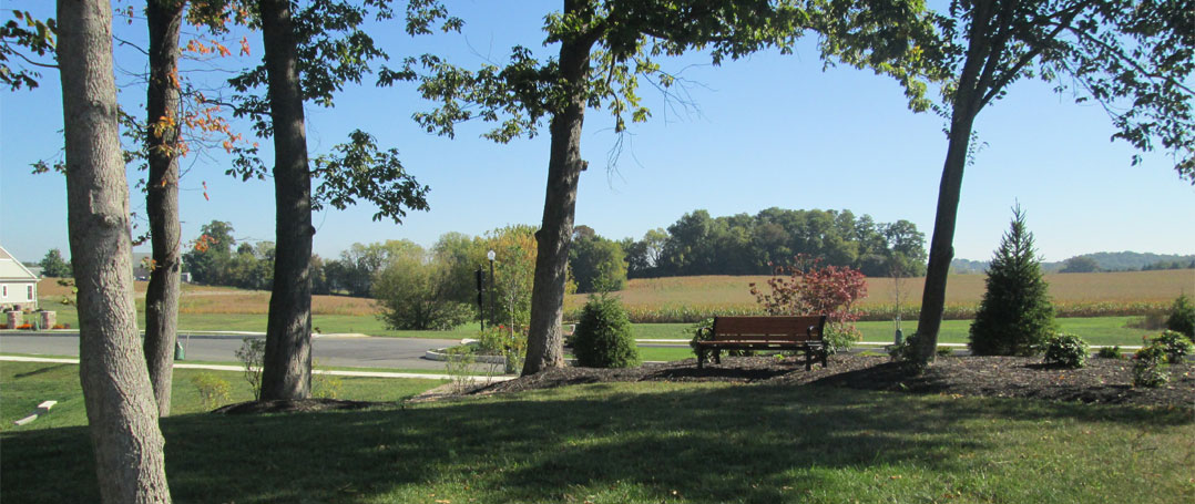 Lititz Reserve Common Area